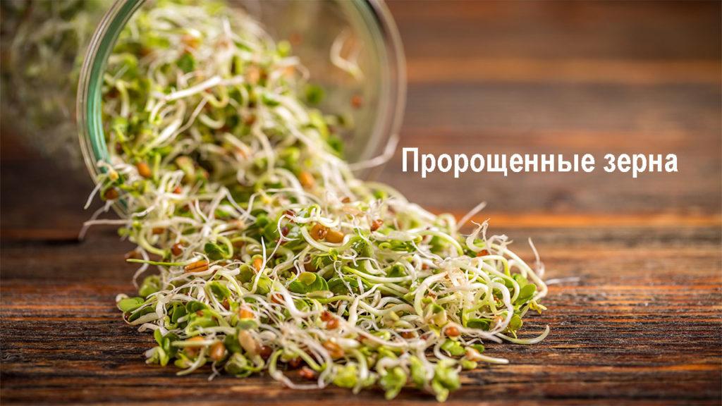 Пророщенные зерна - польза